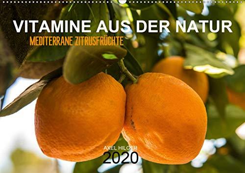 VITAMINE AUS DER NATUR (Wandkalender 2020 DIN A2 quer): Vitamine gehören zu unserer täglichen Nahrung und sind unverzichtbar in unserem Nahrungsplan ... (Monatskalender, 14 Seiten ) (CALVENDO Natur)