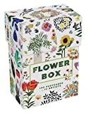 Flower Box: 100 Postcards by 10 Artists - Princeton Architectural Press