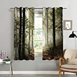 oobon Cortinas Opacas,Dark Forest Route Surrounded By Fog in The Sunshine Day Time in Mother Earth,Sala,Dormitorio,Cortina,Vida Familiar,Decoracion