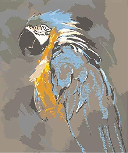 Suubboo Cuadro De Loros Diy Sin Marco Pintura por números Con Kits De Pintura Acrílica Sobre Lienzo Para Colorear Pintura por números Pintados A Mano 40X50Cm