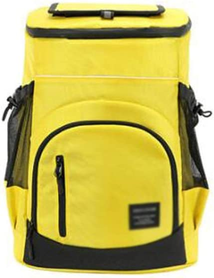 Lightweight Ranking TOP4 Insulated Backpack Cooler Pic Soft OFFicial site Leak-Proof