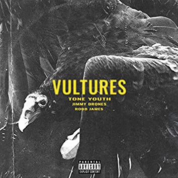 Vultures (feat. Robb James & Jimmy Drones)