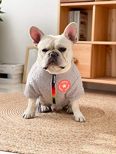 QKEMM Abrigos para Perros de Invierno Chaqueta Dos Pies Abrigo Chaleco de Perro Ropa de Perro para Mascotas Gris XXL