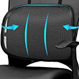 Best Posture Supports - Easy Posture Lumbar Back Support Mesh, Non Slip Review