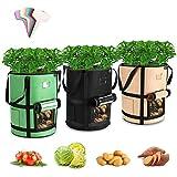 Tvird Macetero Bolsa Planta 3 Pack 10 Galones, Bolsa de Verduras, Bolsas de Cultivo, para Plantas Vegetales Aptas para Plantas de Patata, Zanahorias, Tomates, Cebollas y Otros