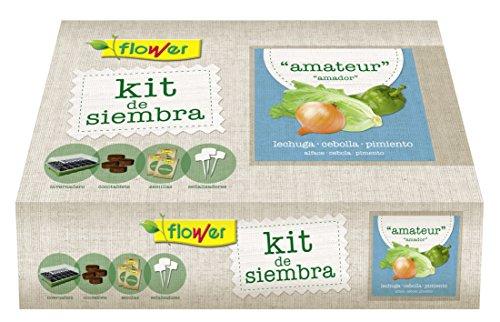 Flower 51177 51177-Kit semillas amateur (lechuga romana, cebolla babosa, pimiento pisa), No aplica, 38x24.5x9.5 cm