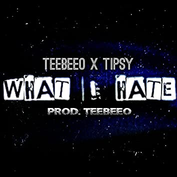 What I Hate (feat. Tipsy)