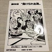 ワンピース 1000LOGS 扉絵 ブロマイド レイリー 830話