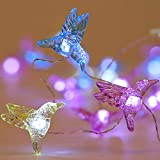 WSgift Hummingbird Decorative String Lights, 13.85 Ft 40 Cool White LED Weatherproof Battery Operated 8 Modes Spring Fairy Lights for Holiday Parties Bedrooms Weddings Gardens with Remote and Timer