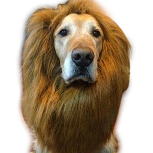 edealing (TM) Pet Costume Lion Mane perruque pour les grands chiens Cat Fancy Dress Up Halloween Festival de vêtements peut être réglable (Brown)