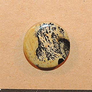 Chinese Writing Stone Cabochon 20mm with 6mm Dome DWK-3614