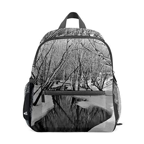 Backpack Student Bookbag for Kids Girls Boys,Frozen River and Trees Casual Daypack School Travel Bag Organizer Gift