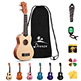 Donner Soprano Ukulele Beginner Kit for Kid Adult Student with Online Lesson 21 Inch Ukelele Bundle Bag Strap String Tuner Pick Polishing Cloth, Rainbow Series-Natural Color DUS-10N