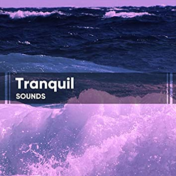 Tranquil Sounds for Sleep