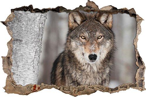 Pixxprint 3D_WD_S2603_62x42 eleganter Wolf in Schneelandschaft Wanddurchbruch 3D Wandtattoo, Vinyl, bunt, 62 x 42 x 0,02 cm