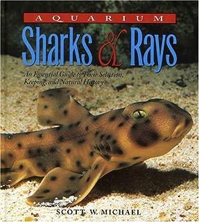 Best marine aquarium sharks for sale Reviews