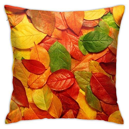 HLw Fundas de cojín cuadradas de hoja roja, diseño de hojas verdes, para salón, sofá, cama, coche, con cremallera invisible, 45 x 45 cm