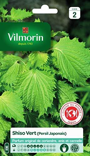 Vilmorin - Sachet graines Shiso Vert (persil japonais)