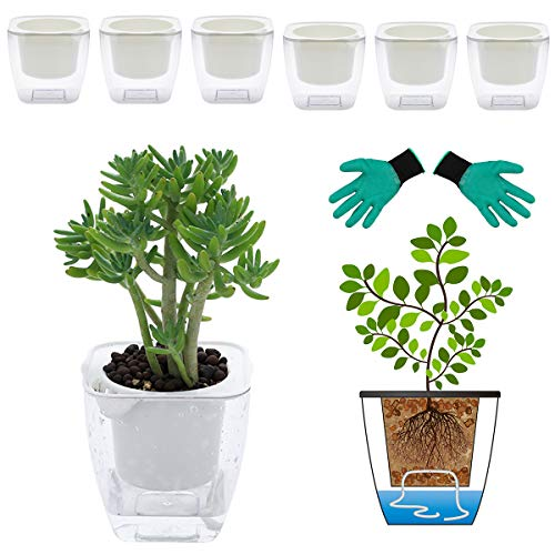 DeEFL 6 Packs 4.1 Inches Clear Self Watering Planters Plastic Self Watering Pots Wick Flower Pots for Indoor Plants, African Violet, Ocean Spider Plant, Orchid, Clear and White
