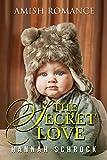 The Secret Love (English Edition)