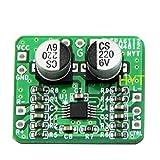 Raybre Art Modulo Amplificatore bilanciato differenziale Scheda Amplificatore per Cuffie SGM 4812 132mW 1 pz