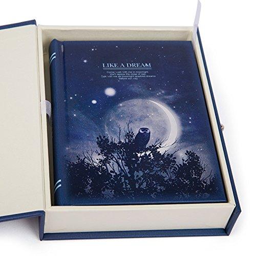 Moonlight Pattern Skizzieren Schreiben abschließbar Notebook A6 Daily Journal Secret Tagebuch mit Aufbewahrungskoffer (Eule)