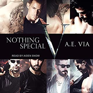 Nothing Special V cover art
