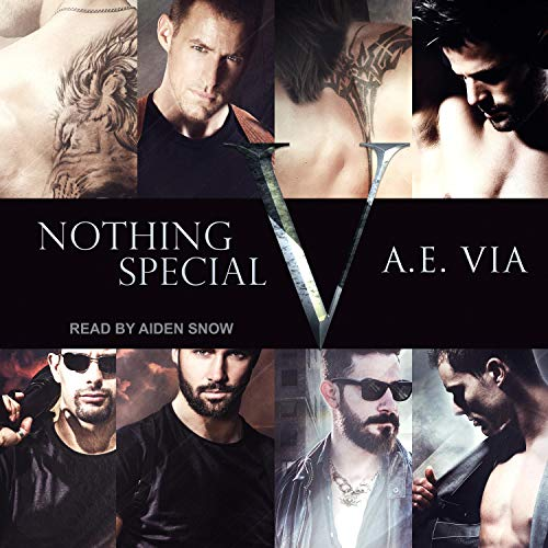 Nothing Special V audiobook cover art