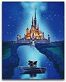 Disney Castle 5D Diamond Painting DIY con incrustaciones de punto de cruz Diamond Painting Set Craft Gift(9.8x11.8inch)