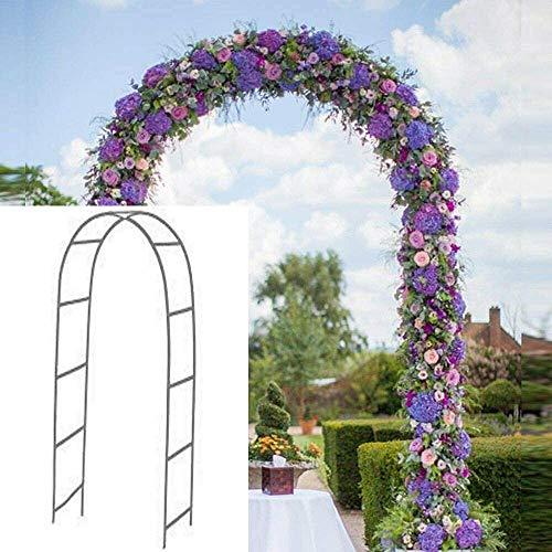 Newsmarts Metal Garden Arch
