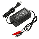 Lead Acid Battery Charger, 14.8V 4A Charger with Clip for 12v Lead Acid Battery,Black