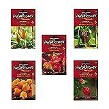 Moruga Scorpion, Habanero Chocolate, Tabasco, Bishop Crown, Habanero Orange - Kit 5 bustine di Semi di Peperoncino Piccantezza Variabile