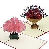 Confezione da 2 biglietti di auguri 3D pop-up con fiori di ciliegio Cornucopia, biglietti di compleanno creativi fai da te, pieghevoli, per compleanno, anniversario, matrimonio, San Valentino
