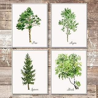 Trees Wall Art Prints (Set of 4) - Unframed - 8x10s | Botanical Prints