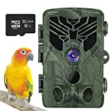 Upgrade WiFi Bluetooth Wildlife Camera, Taotique 20MP 1080P WiFi Trail Camera with Night Vision Motion, 32GB SD Card, 0.2s Trigger Speed Hunting Cam for Outdoor, Garden and Home Security Surveillance