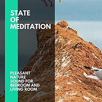 State of Meditation - Pleasant Nature Sound for Bedroom and Living Room