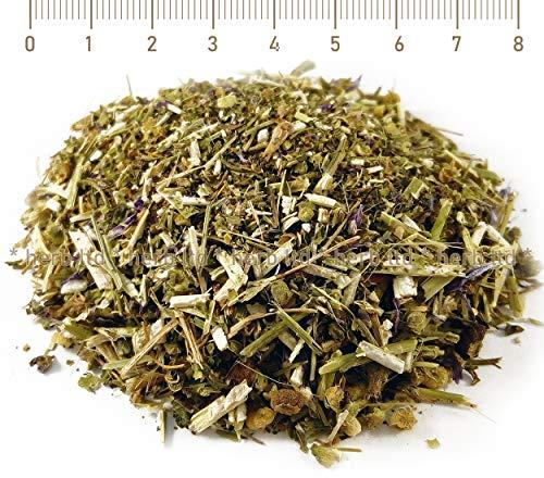 Malvenblüten Tee, Malva Sylvestris L., Kräuter Blätter