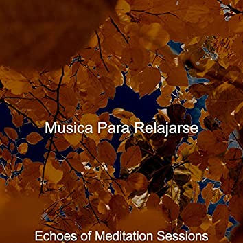 Echoes of Meditation Sessions