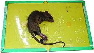 BEONE 5PCS Mouse Trap, Mouse Glue Traps, Mouse Glue Boards, Mouse Size Glue Traps Sticky Boards, For Home Garden Mouse Con...