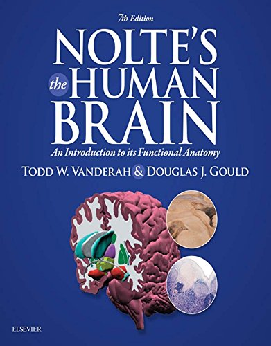 513oSKYetSL - Nolte's The Human Brain E-Book: An Introduction to its Functional Anatomy