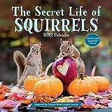 The Secret Life of Squirrels Wall Calendar 2022