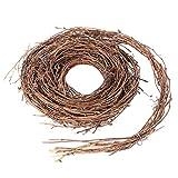 Wakauto - Guirnalda de vid natural de ramas de tornillo de madera decorativa para manualidades y decoración para fiestas de casa