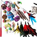 SenYoung 27PCS Cat Toys Kitten Toys, Interactive Cat Toy Set including Cat Teaser Wand, Catnip Fish, Cat Teather Toy, Feather Mice, Silvervine Chew Stick