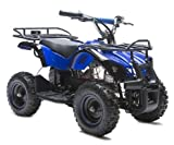 Rosso Motors Kids ATV Kids Quad 4 Wheeler Ride On Utility with 800W 36V Battery Electric Power Lights in Blue Motorcycle for Kids, Disc Brake System and Reverse for Child Safety