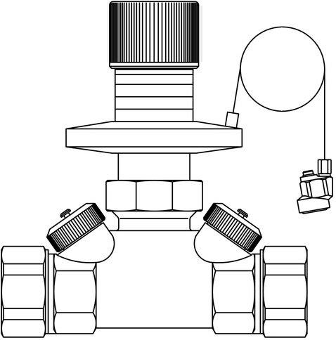 'Oventrop différence Régulateur de pression hycocon DTZ PN 16, 50–300 Mbar DN 50, 2 AG