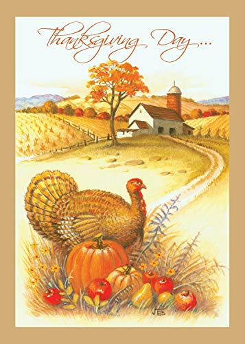 Thanksgiving Boxed Greeting Card Multi-Pack Set (4x6) by Fravessi   16 Cards + 17 Envelopes   Fall Turkey Scene Design   Amber, Orange