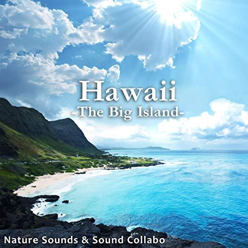 水辺のホーストレッキング ~ワイピオ渓谷 ハワイ島~