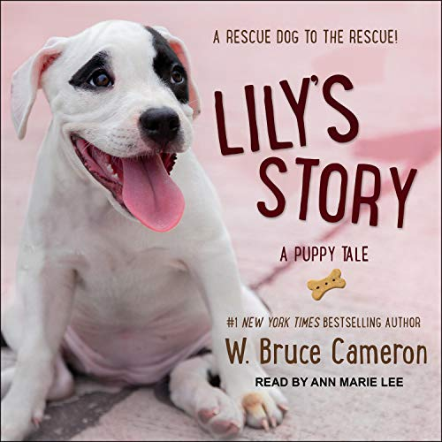 Lily's Story audiobook cover art