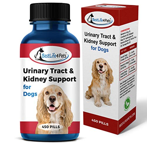 BestLife4Pets Dog UTI Bladder Support Supplement - Natural Urinary Tract Infection Treatment Relieves Painful Urine Incontinence Leaks - Reduces Bladder Infections - Prevents Pet Kidney Disease Stones