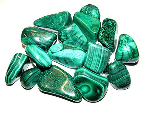 Zentron Crystal Collection: 1 Pound Natural Large Tumbled Green Malachite- Polished Authentic Wholesale Gemstones For Healing, Wicca, Reiki